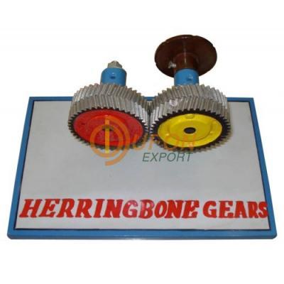 Herring Bone Gear