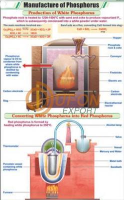 Manufacture of Phosphorus