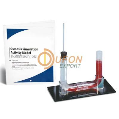 Osmosis Simulation Activity Model